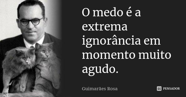 O medo é a extrema ignorância em momento muito agudo.... Frase de Guimarães Rosa.