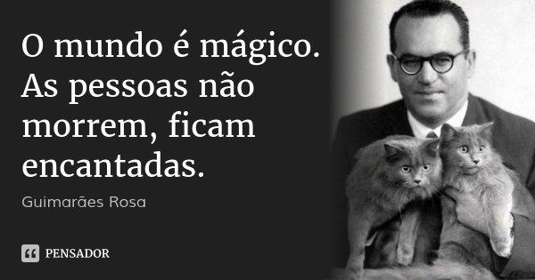 O mundo é mágico. As pessoas não morrem, ficam encantadas.... Frase de Guimarães Rosa.