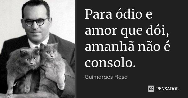 Para ódio e amor que dói, amanhã não é consolo.... Frase de Guimarães Rosa.