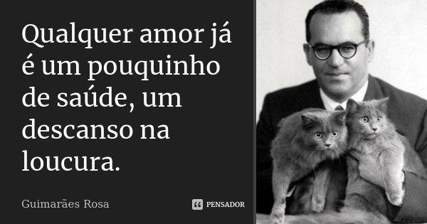 Qualquer amor já é um pouquinho de saúde, um descanso na loucura.... Frase de Guimarães Rosa.