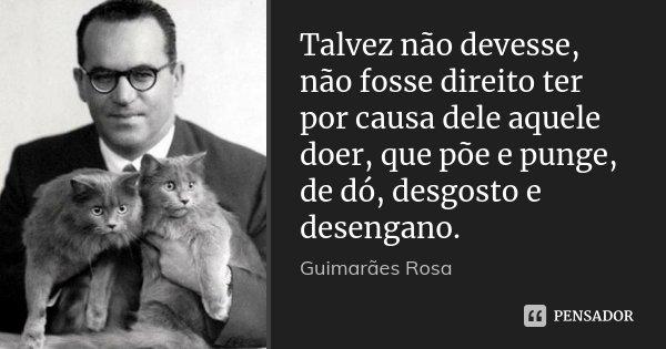 Talvez não devesse, não fosse direito ter por causa dele aquele doer, que põe e punge, de dó, desgosto e desengano.... Frase de Guimarães Rosa.
