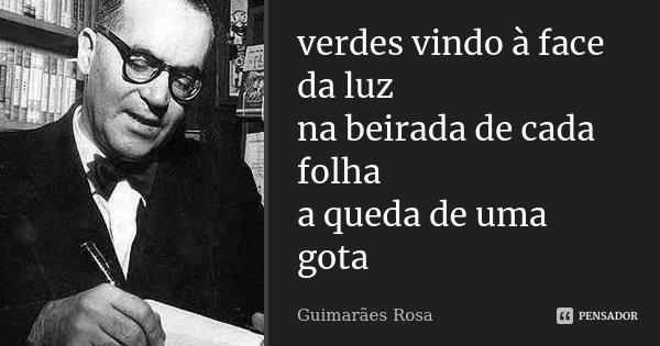 verdes vindo à face da luz na beirada de cada folha a queda de uma gota... Frase de Guimarães Rosa.