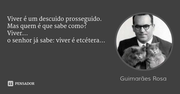 Viver é um descuido prosseguido. Mas quem é que sabe como? Viver... o senhor já sabe: viver é etcétera...... Frase de Guimarães Rosa.