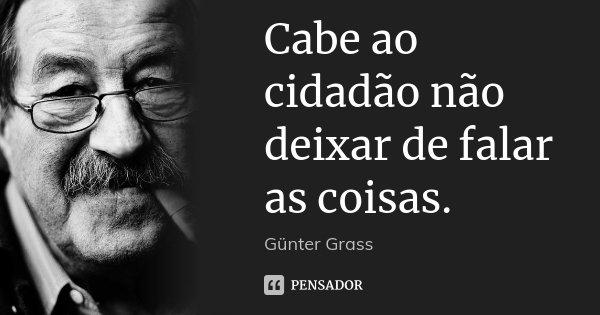 Cabe ao cidadão não deixar de falar as coisas.... Frase de Günter Grass.