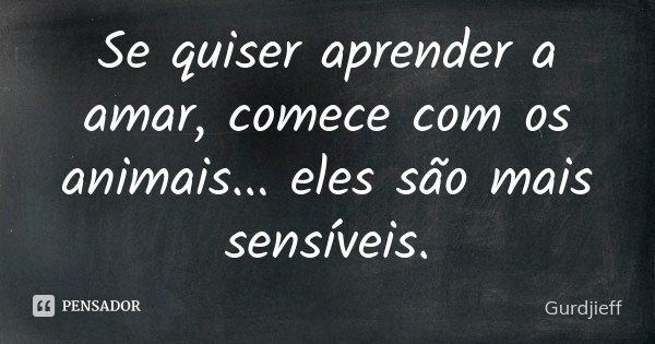 Se quiser aprender a amar, comece com os animais ... eles são mais sensíveis.... Frase de Gurdjieff.