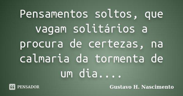 Pensamentos soltos, que vagam solitários a procura de certezas, na calmaria da tormenta de um dia....... Frase de Gustavo H. Nascimento.