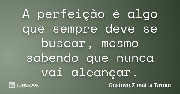 A perfeição é algo que sempre deve se buscar, mesmo sabendo que nunca vai alcançar.... Frase de Gustavo Zanatta Bruno.