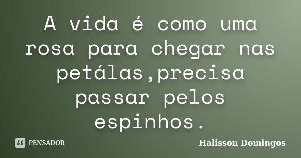 A vida é como uma rosa para chegar nas petálas,precisa passar pelos espinhos.... Frase de Halisson Domingos.