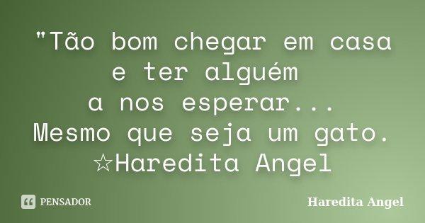 """""""Tão bom chegar em casa e ter alguém a nos esperar... Mesmo que seja um gato. ☆Haredita Angel... Frase de Haredita Angel."""