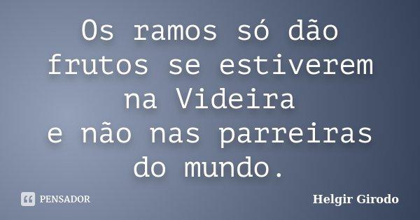 Os ramos só dão frutos se estiverem na Videira e não nas parreiras do mundo.... Frase de Helgir Girodo.