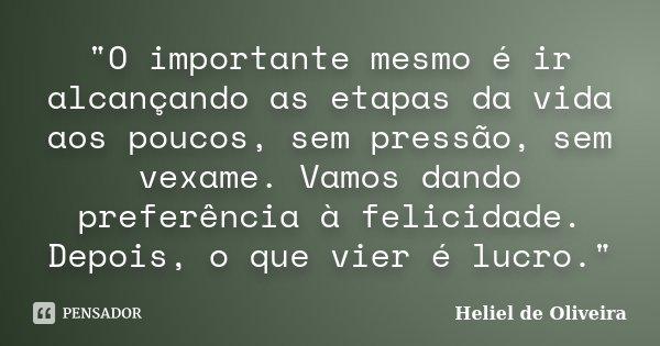 """""""O importante mesmo é ir alcançando as etapas da vida aos poucos, sem pressão, sem vexame. Vamos dando preferência à felicidade. Depois, o que vier é lucro... Frase de Heliel de Oliveira."""