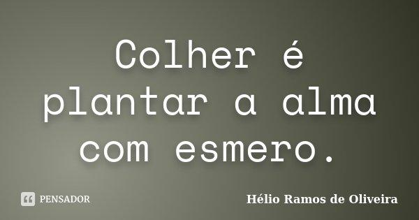 Colher é plantar a alma com esmero.... Frase de Hélio Ramos de Oliveira.