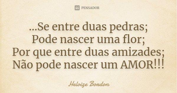 ...Se entre duas pedras; Pode nascer uma flor; Por que entre duas amizades; Não pode nascer um AMOR!!!... Frase de Heloize Bordon.