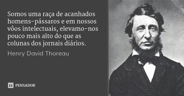 Somos uma raça de acanhados homens-pássaros e em nossos vôos intelectuais, elevamo-nos pouco mais alto do que as colunas dos jornais diários.... Frase de Henry David Thoreau.
