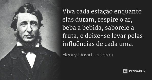 Viva cada estação enquanto elas duram, respire o ar, beba a bebida, saboreie a fruta, e deixe-se levar pelas influências de cada uma.... Frase de Henry David Thoreau.