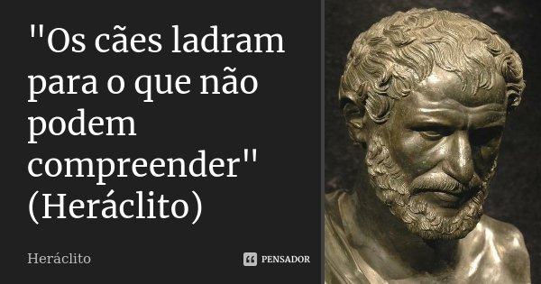 """""""Os cães ladram para o que não podem compreender"""" (Heráclito)... Frase de Heráclito."""
