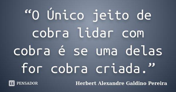 """""""O Único jeito de cobra lidar com cobra é se uma delas for cobra criada.""""... Frase de Herbert Alexandre Galdino Pereira."""