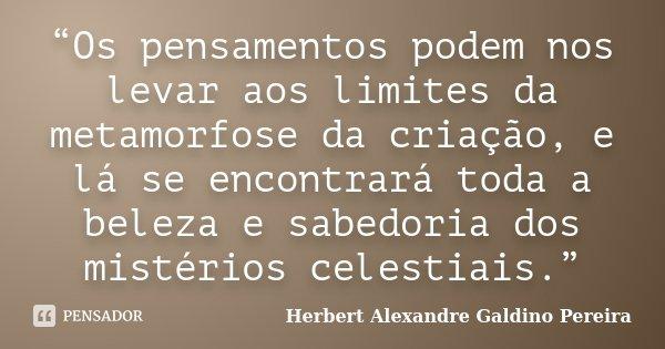 """""""Os pensamentos podem nos levar aos limites da metamorfose da criação, e lá se encontrará toda a beleza e sabedoria dos mistérios celestiais.""""... Frase de Herbert Alexandre Galdino Pereira."""