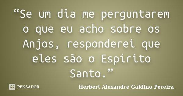"""""""Se um dia me perguntarem o que eu acho sobre os Anjos, responderei que eles são o Espírito Santo.""""... Frase de Herbert Alexandre Galdino Pereira."""