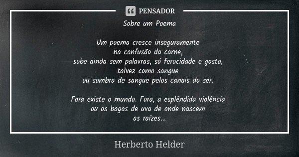 Sobre um Poema Um poema cresce inseguramente na confusão da carne, sobe ainda sem palavras, só ferocidade e gosto, talvez como sangue ou sombra de sangue pelos ... Frase de Herberto Helder.