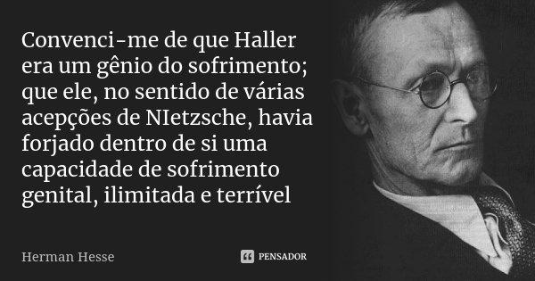 Convenci-me de que Haller era um gênio do sofrimento; que ele, no sentido de várias acepções de NIetzsche, havia forjado dentro de si uma capacidade de sofrimen... Frase de Herman Hesse.