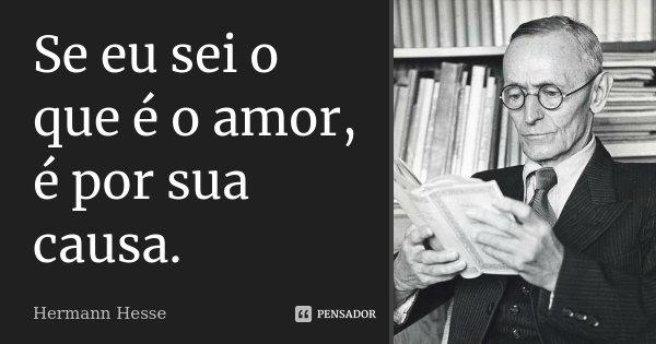 Se eu sei o que é o amor, é por sua causa.... Frase de Hermann Hesse.