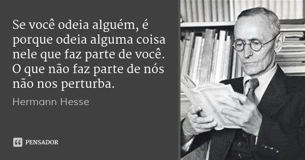 Se você odeia alguém, é porque odeia alguma coisa nele que faz parte de você. O que não faz parte de nós não nos perturba.... Frase de Hermann Hesse.
