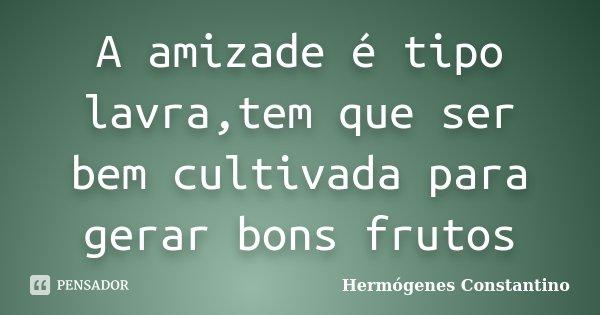 A amizade é tipo lavra,tem que ser bem cultivada para gerar bons frutos... Frase de Hermógenes Constantino.