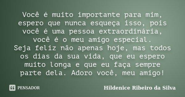 Você é Muito Importante Para Mim,... Hildenice Ribeiro Da