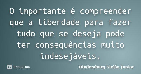 O importante é compreender que a liberdade para fazer tudo que se deseja pode ter consequências muito indesejáveis.... Frase de Hindemburg Melão Junior.