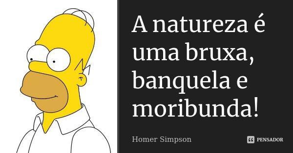 A natureza é uma bruxa, banquela e moribunda!... Frase de Homer Simpson.