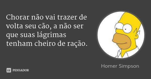 Chorar não vai trazer de volta seu cão, a não ser que suas lágrimas tenham cheiro de ração.... Frase de Homer Simpson.