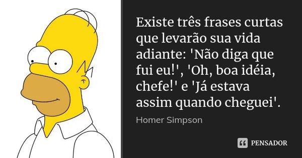 Existe três frases curtas que levarão sua vida adiante: 'Não diga que fui eu!', 'Oh, boa idéia, chefe!' e 'Já estava assim quando cheguei'.... Frase de Homer Simpson.