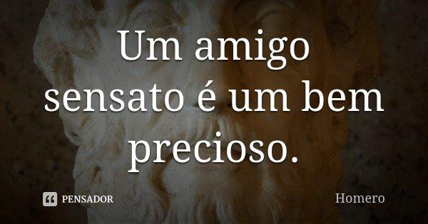 Um amigo sensato é um bem precioso.... Frase de Homero.