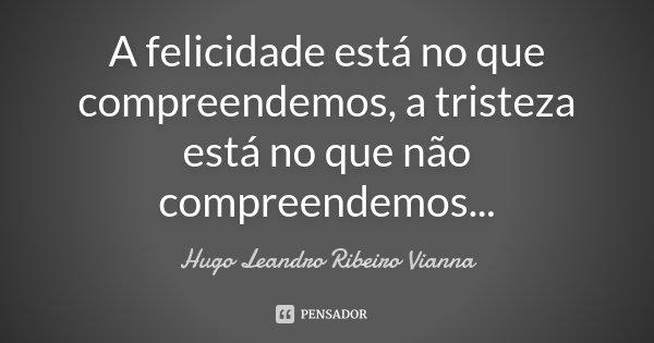A felicidade está no que compreendemos, a tristeza está no que não compreendemos...... Frase de Hugo Leandro Ribeiro Vianna.