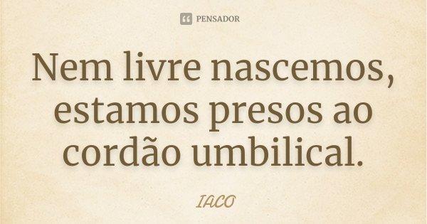 Nem livre nascemos, estamos presos ao cordão umbilical.... Frase de IACO.