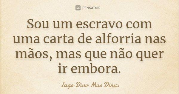 Sou um escravo com uma carta de alforria nas mãos, mas que não quer ir embora.... Frase de Iago Dino Mac Dinus.