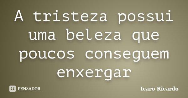 A tristeza possui uma beleza que poucos conseguem enxergar... Frase de Icaro Ricardo.
