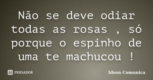 Não se deve odiar todas as rosas , só porque o espinho de uma te machucou !... Frase de Idson Comunica.