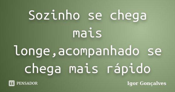 Sozinho se chega mais longe,acompanhado se chega mais rápido... Frase de Igor Gonçalves.