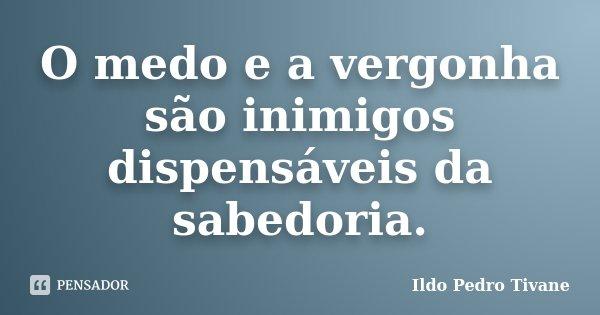 O medo e a vergonha são inimigos dispensáveis da sabedoria.... Frase de Ildo Pedro Tivane.