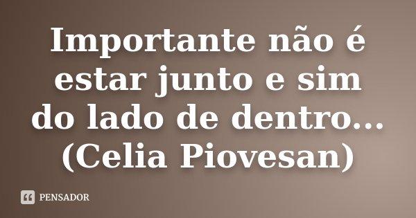 Importante não é estar junto e sim do lado de dentro... (Celia Piovesan)... Frase de Desconhecido.