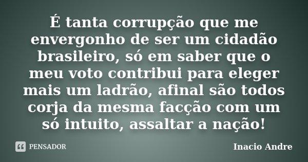 É tanta corrupção que me envergonho de ser um cidadão brasileiro, só em saber que o meu voto contribui para eleger mais um ladrão, afinal são todos corja da mes... Frase de Inacio Andre.