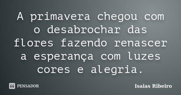 10 Mensagens De Esperança Que Farão Você Acreditar No: A Primavera Chegou Com O Desabrochar Das... Isaias Ribeiro