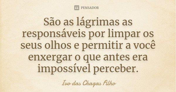 São as lágrimas as responsáveis por limpar os seus olhos e permitir a você enxergar o que antes era impossível perceber.... Frase de Ivo das Chagas Filho.