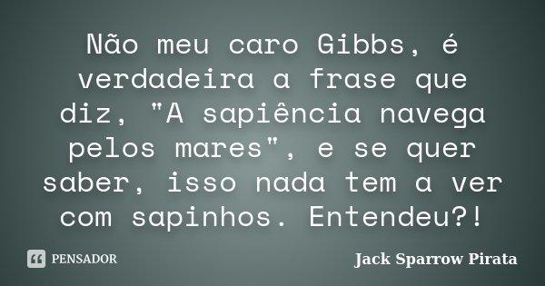 """Não meu caro Gibbs, é verdadeira a frase que diz, """"A sapiência navega pelos mares"""", e se quer saber, isso nada tem a ver com sapinhos. Entendeu?!... Frase de Jack Sparrow Pirata."""