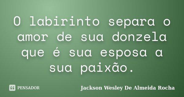 O Labirinto Separa O Amor De Sua Donzela Jackson Wesley De Almeida