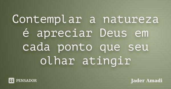 Contemplar a natureza é apreciar Deus em cada ponto que seu olhar atingir... Frase de Jader Amadi.