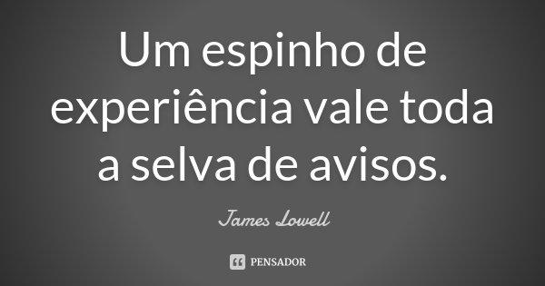 Um espinho de experiência vale toda a selva de avisos.... Frase de James Lowell.