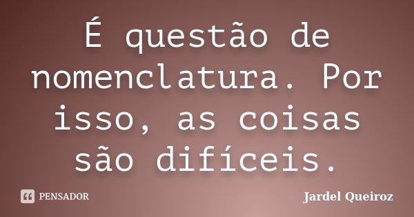 É questão de nomenclatura. Por isso, as coisas são difíceis.... Frase de Jardel Queiroz.